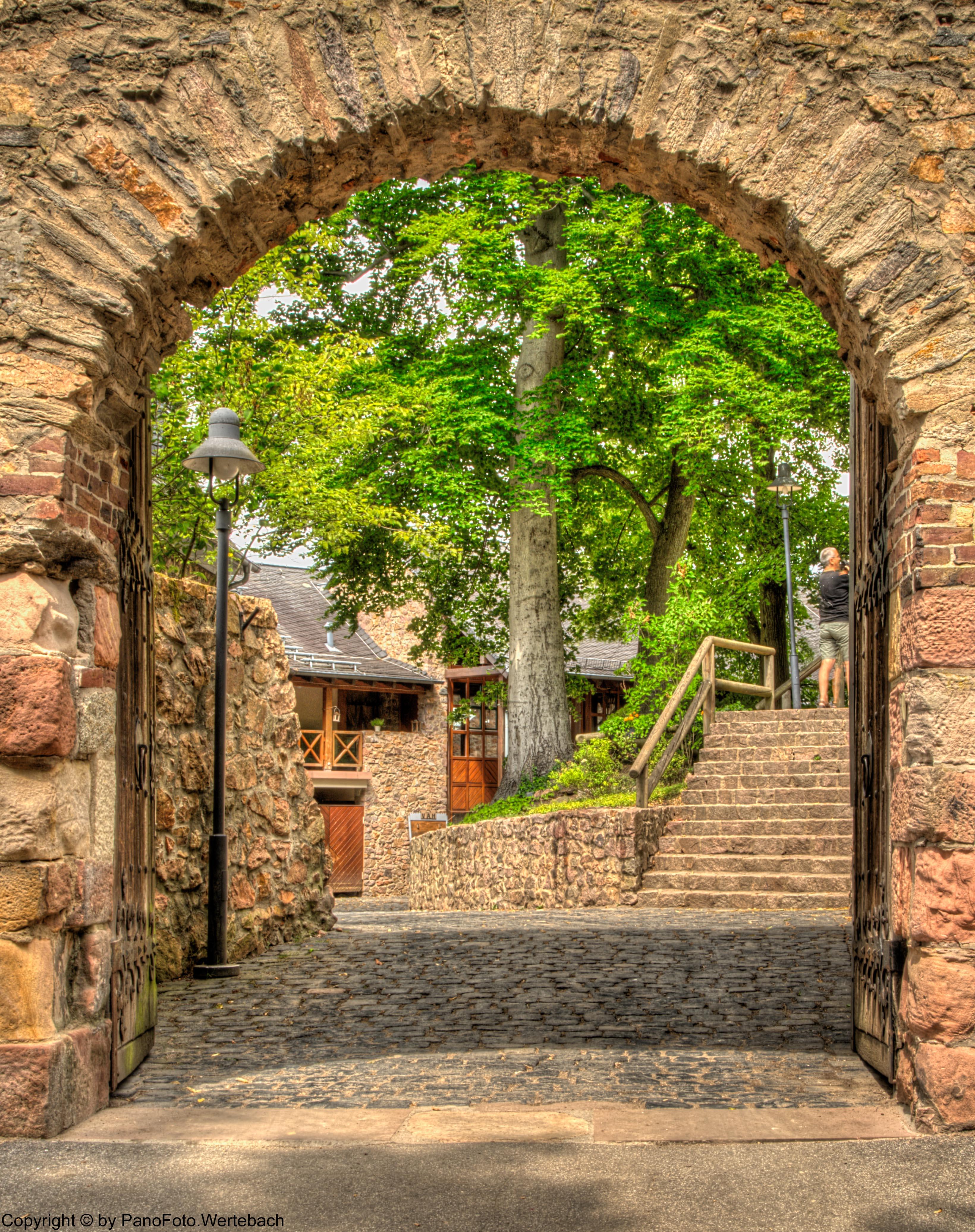 003 Schloss Auerbach In Bensheim